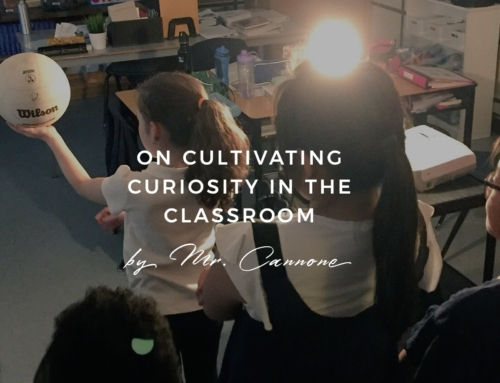 On cultivating curiosity in the classroom